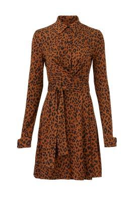 2a13ede3a926a8 Leopard Side Tie Shirtdress by Diane von Furstenberg for  85