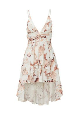 Enchanted Garden Broderie Dress by Thurley