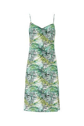 Palm Printed Dana Dress by Louna