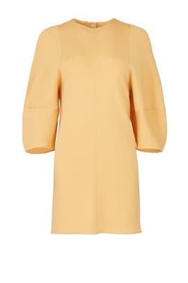 Apricot Balloon Sleeve Dress by Tibi