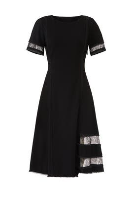 Black Lace Panel Dress by Jason Wu Collection