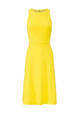 Yellow Crew Neck Dress by RACHEL ROY COLLECTION
