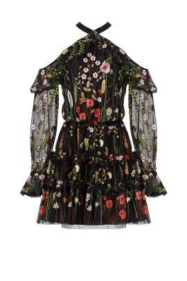 Black Floral Adeline Dress by Alexis