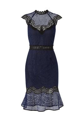 Navy Lace Flare Sheath by Saylor