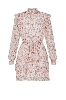 Melannie Chiffon Mini Dress by MINKPINK