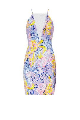 d272ce72fe3 Printed Pearl Dress by Lilly Pulitzer for  30 -  40