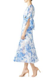 Only Everything Midi Dress by alice McCALL