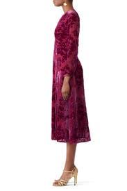 Carroll Velvet Dress by Yumi Kim