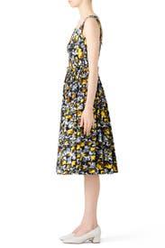 Citrus Full Skirt Dress by Marni