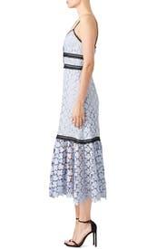 Blue Lace Elle Dress by Jill Jill Stuart