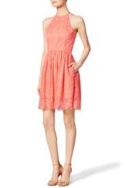 Serene Dress by Trina Turk