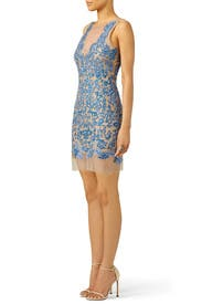 Royal Blue Floral Tulle Dress by Nicole Miller